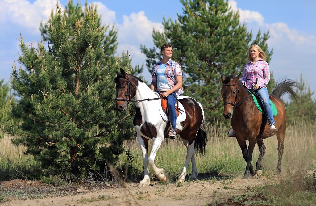 Чем полезна шаговая конная прогулка для женщин